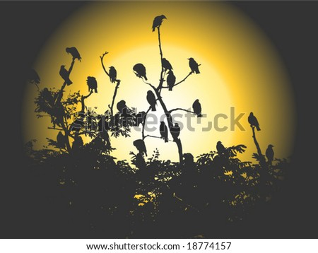 stock vector : Vector image of flock of birds sitting on branches silhouetted by sun
