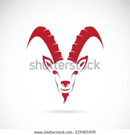vector image of goat  chamois