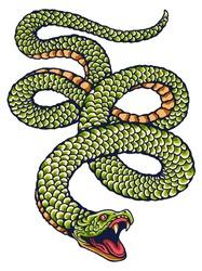 vector image of green snake for tattoo design