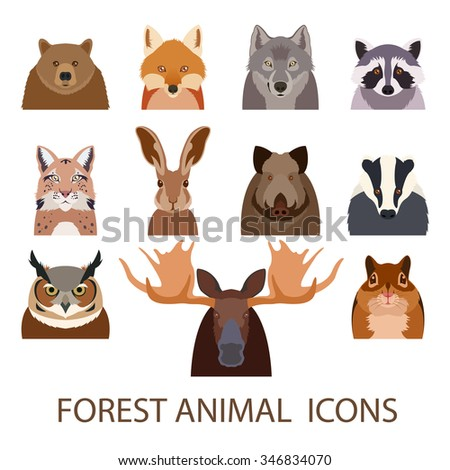 vector image of set of forest