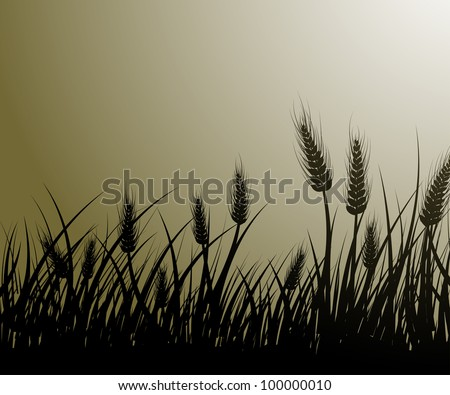 vector image of wheat field