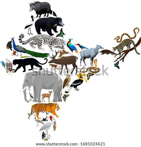 vector india fauna map  flat