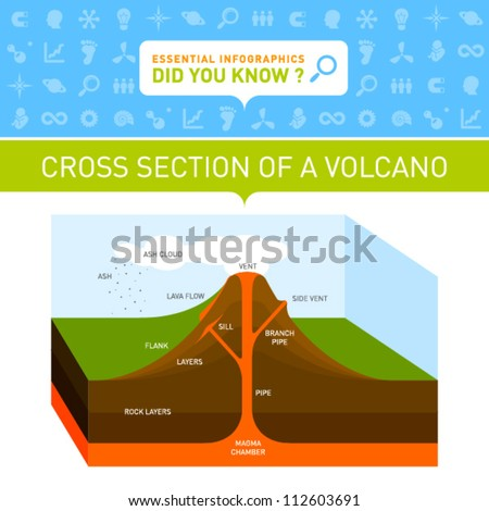 vector infographic   cross