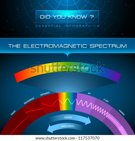 Vector Infographic - The Electromagnetic Spectrum