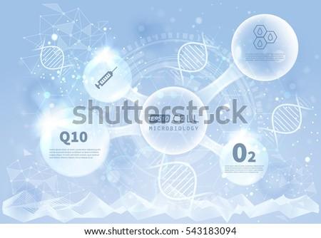 vector infographics scientific