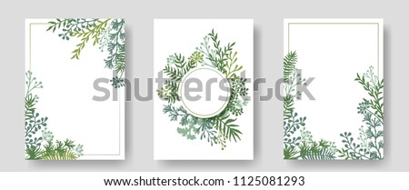 Vector invitation cards with herbal twigs and branches wreath and corners border frames. Rustic vintage bouquets with fern fronds, mistletoe twigs, willow, palm branches in green colors. - Shutterstock ID 1125081293