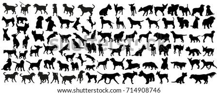 vector  isolated black