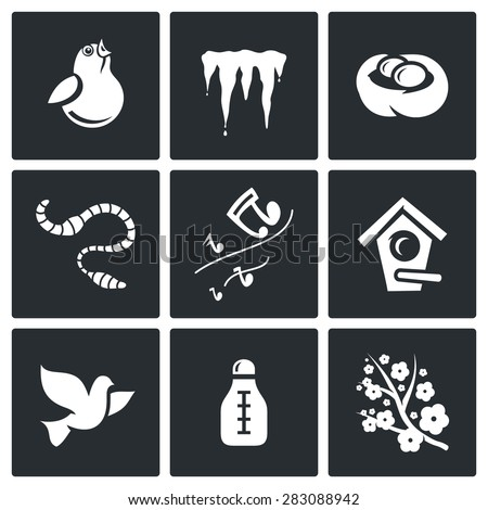 vector isolated flat icons
