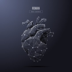 Vector isolated heart low poly from metall wireframe and points. Polygonal 3D white human organ on dark background. Medicine concept with geometry triangle. Abstract mash line and point origami.