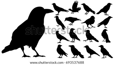 vector  isolated silhouette of