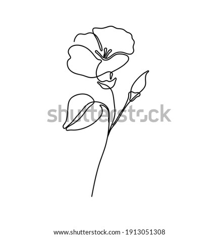 vector isolated simple tiny one