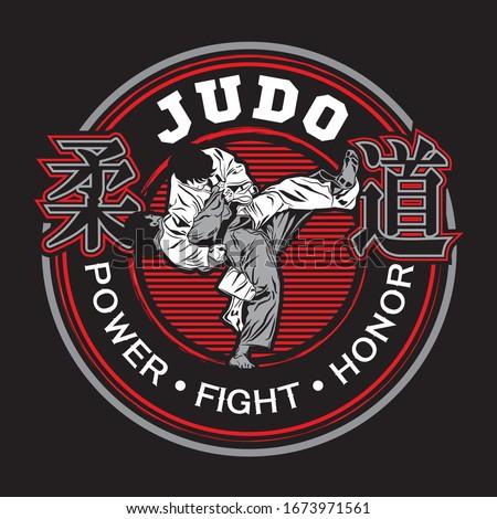 Vector Judo/ Design template in art style/ Zdjęcia stock ©