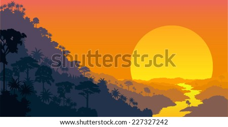 vector jungle at sunset