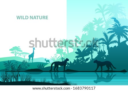 vector jungle background with