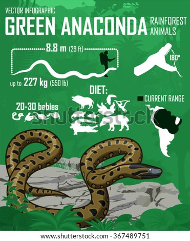 vector jungle green anaconda
