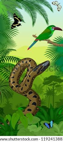 vector jungle rainforest