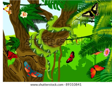 Vector Jungle with Green Snake, Frog, Butterflies and Humming-birds