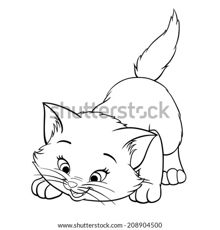 vector kitten playing cartoon