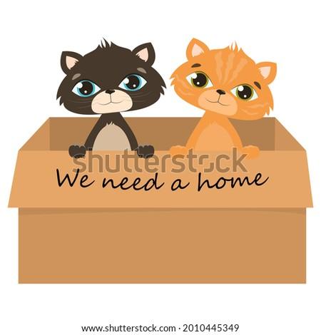 vector kittens isolated on