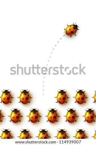 vector ladybugs