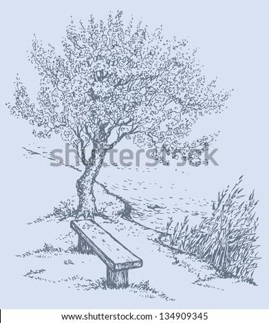 vector landscape old bench