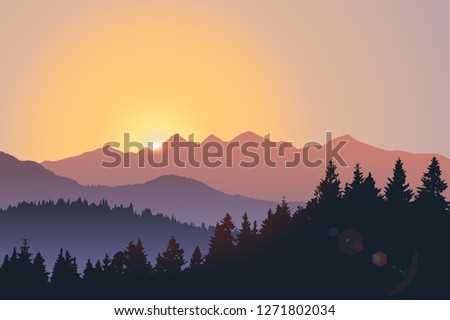 vector landscape  sunset scene