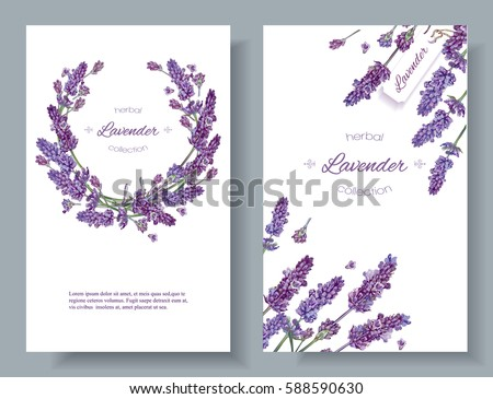 Vector lavender flower banners on white. Design for natural cosmetics, beauty store, health care products, perfume, essential oil, aromatherapy. Can be used as greeting card or wedding invitation