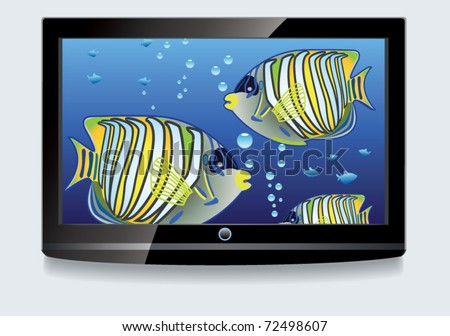 vector LCD screen with colorful fishes