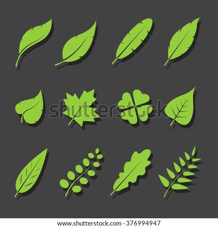 vector leaves green icon set on