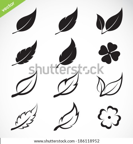 vector leaves icon set on white ...