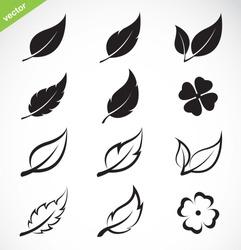 Vector leaves icon set on white background. leaves logo. Easy editable layered vector illustration.