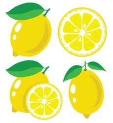 Vector lemon. Fresh lemon fruits, collection of vector illustrations