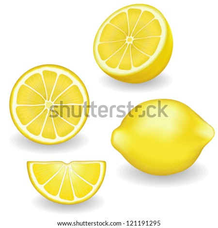 vector - Lemons, four views. Fresh, natural lemons: whole, half, slice, wedge. Graphic illustrations isolated on white background. Includes gradient mesh.