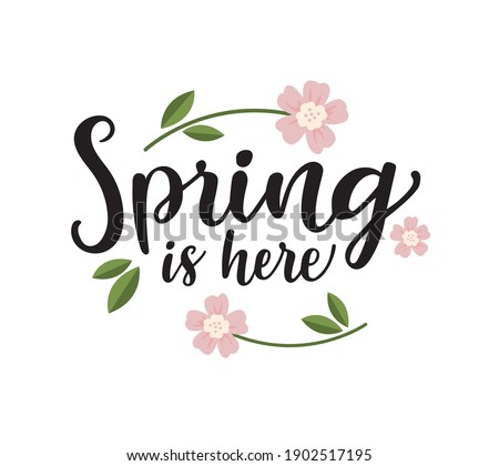"""Vector lettering illustration of """"Spring is here"""" for Happy holidays greeting card. Lettering celebration logo. Typography for spring holidays. Calligraphic poster on white background. Postcard."""