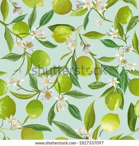 Vector Lime Floral Background, Seamless Fruit Pattern, Citrus Fruits, Flowers, Leaves, Limes Branches Texture. Watercolor Style Lemons. Vintage Lemon Design for Print, Wedding, Backdrop, Wallpaper