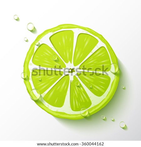 Vector lime slice, drops of juicy, realistic design, minimalistic style, isolated object on a white background.