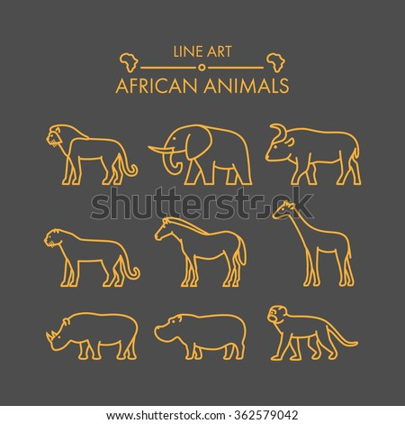 Vector line african animals icon set. Linear figure lion, cheetah, leopard, elephant, buffalo and giraffe.