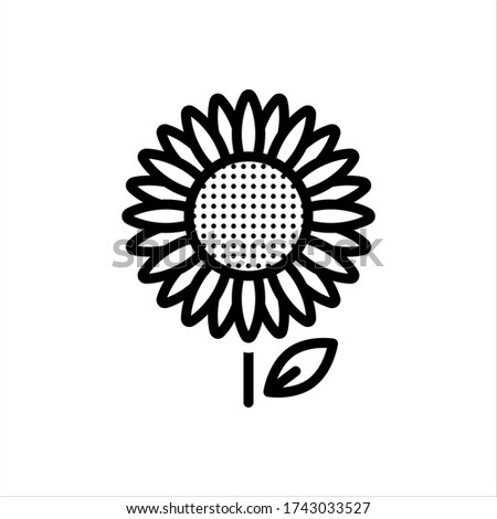 vector line icon for sunflower