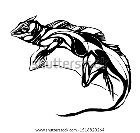 vector lizard graphics on a