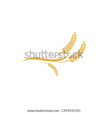 vector logo design and elements of wheat grain, wheat ears, wheat seed, or wheat rye, prosperity symbol