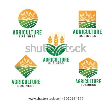 vector logo design illustration