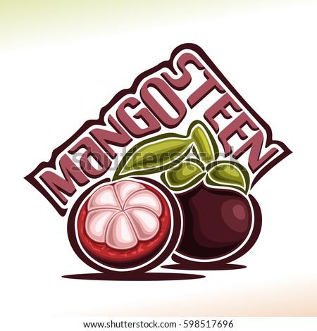 vector logo mangosteen fruit