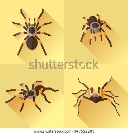 vector long shadow flat spider