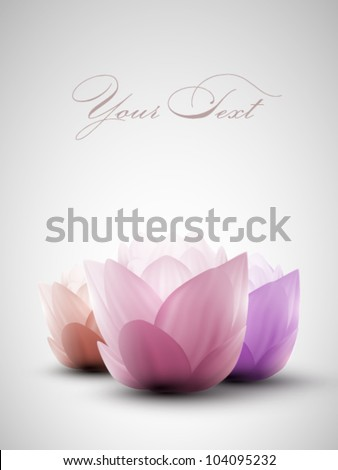 vector lotus flowers