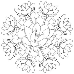 vector mandala with Lotus flowers. Beautiful relaxation black and white ornament. Large size, meditative drawing. Coloring book page.
