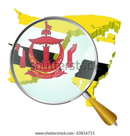 vector map of  Brunei under the magnifying glass