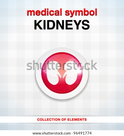 Vector medical icons / kidneys / series of icons
