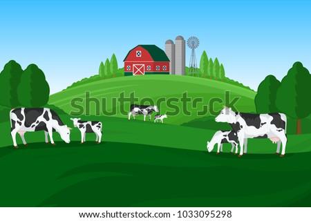 Vector milk farming illustration. Summer rural landscape, cows, calves and design elements.