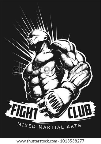 vector mma fighter