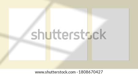 vector mock up of three blanks